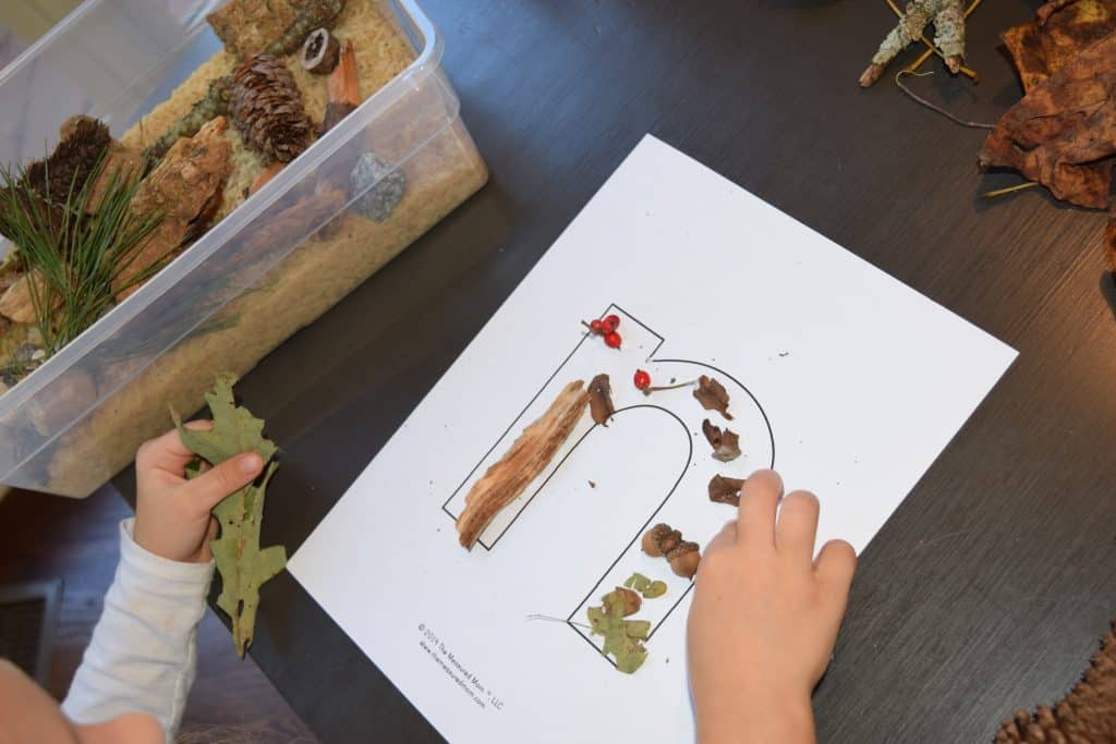 "Decorating ""N/n"" with nature walk finds"