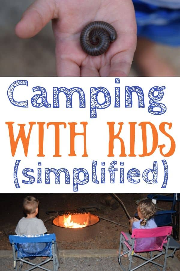 A millipede in a boy's hand and two kids sitting by the campfire. Text: camping with kids (simplified)