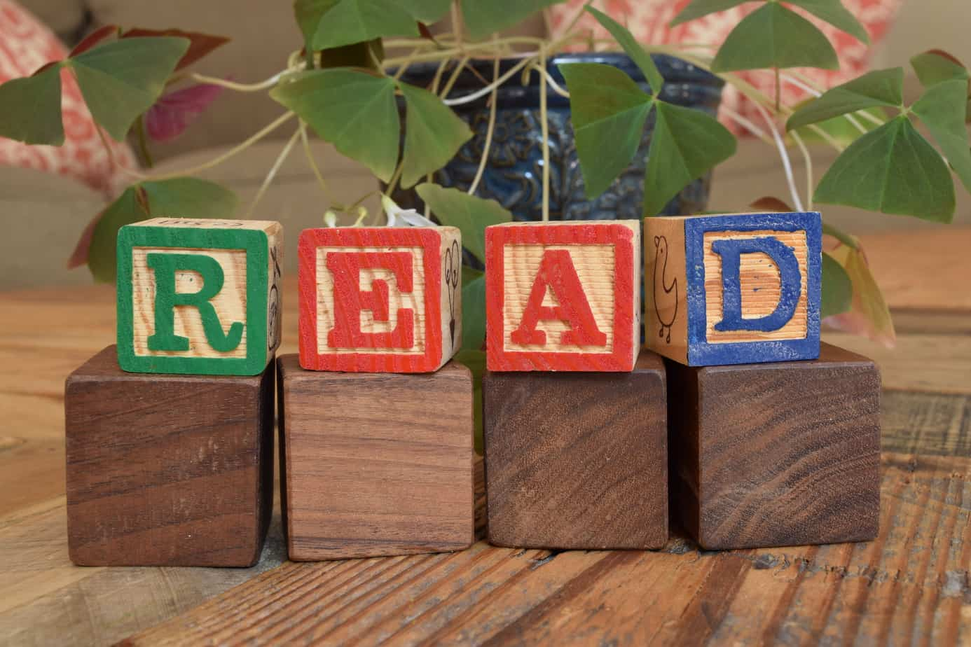 "blocks that spell the word ""read"""