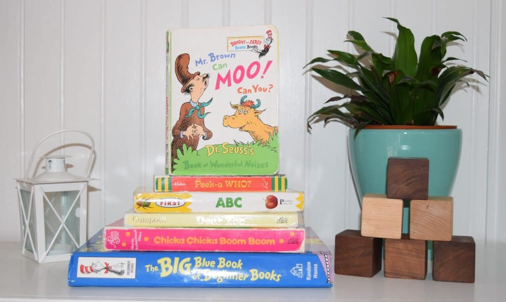 Children's books on a shelf next to a lantern, plant and building blocks.