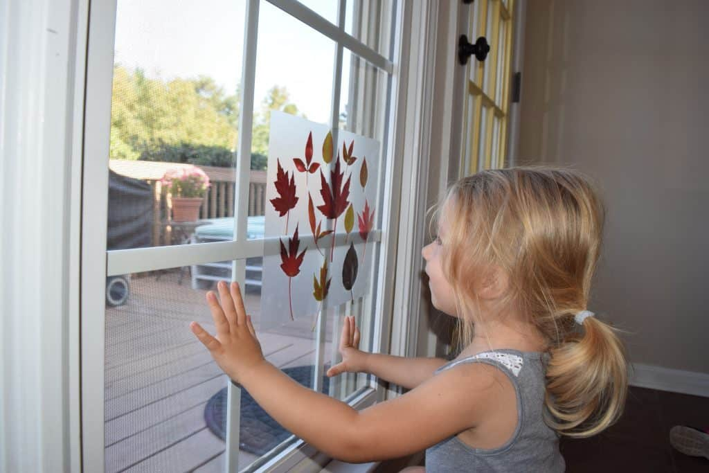 A preschool girl looking at the leaf collage that she made with fall leaves.